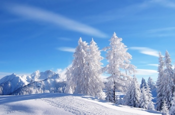 beautiful-winter
